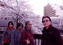 シネマ桜(C3).jpg